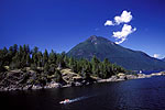 Click here to display larger image